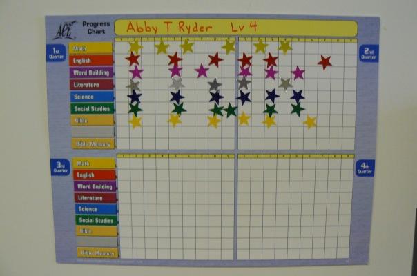 ACE progress chart